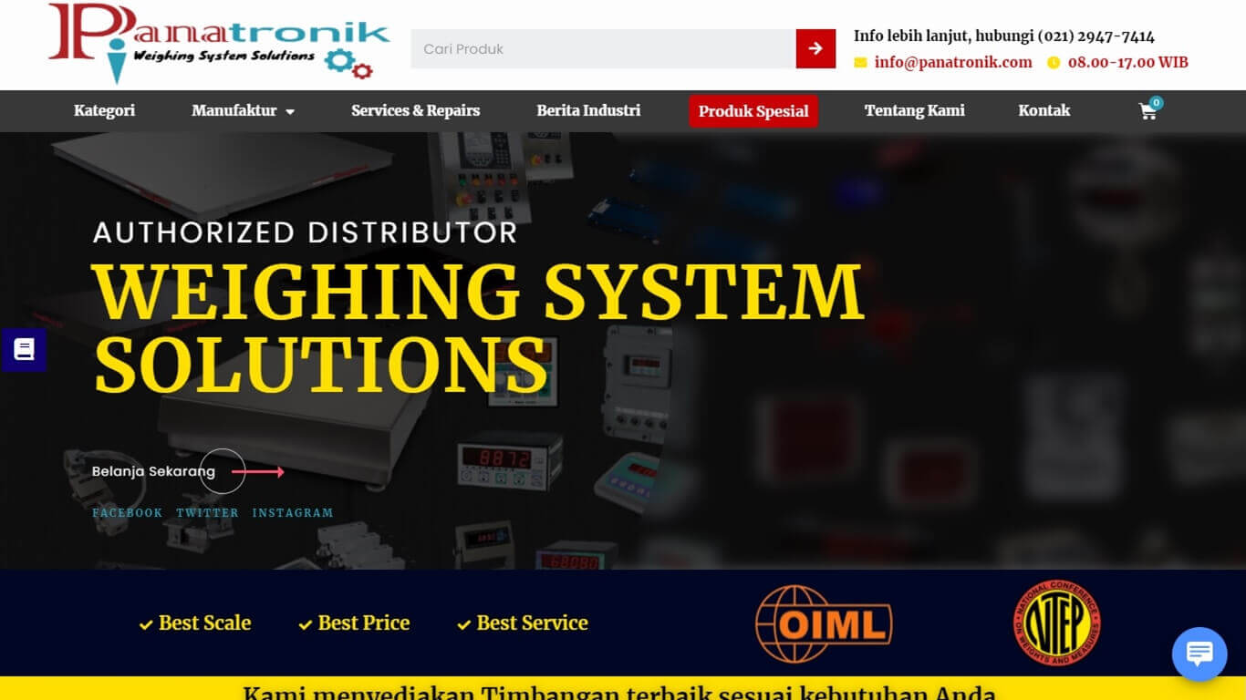 Panatronik Weighing System Solutions