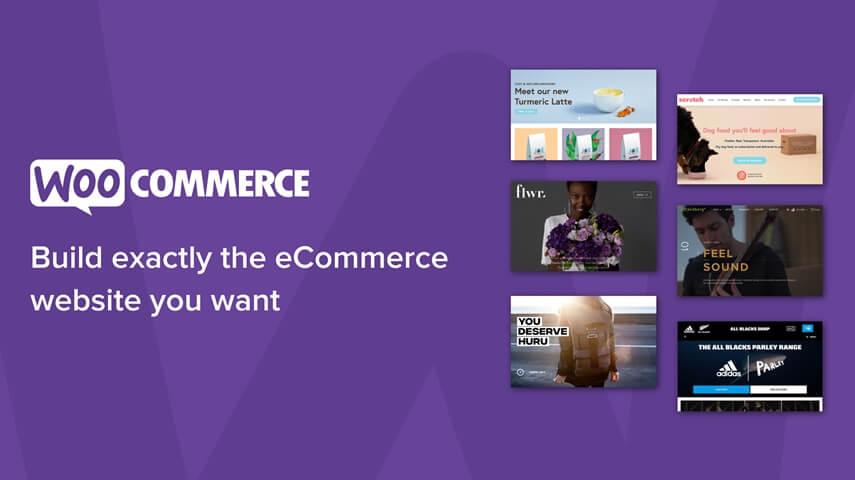WooCommerce Development